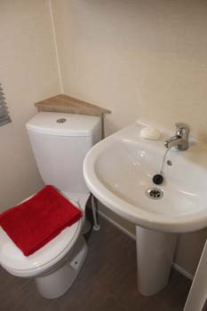 BK Bluebird Caprice - The pedestal washbasin and low level toilet in the shower room