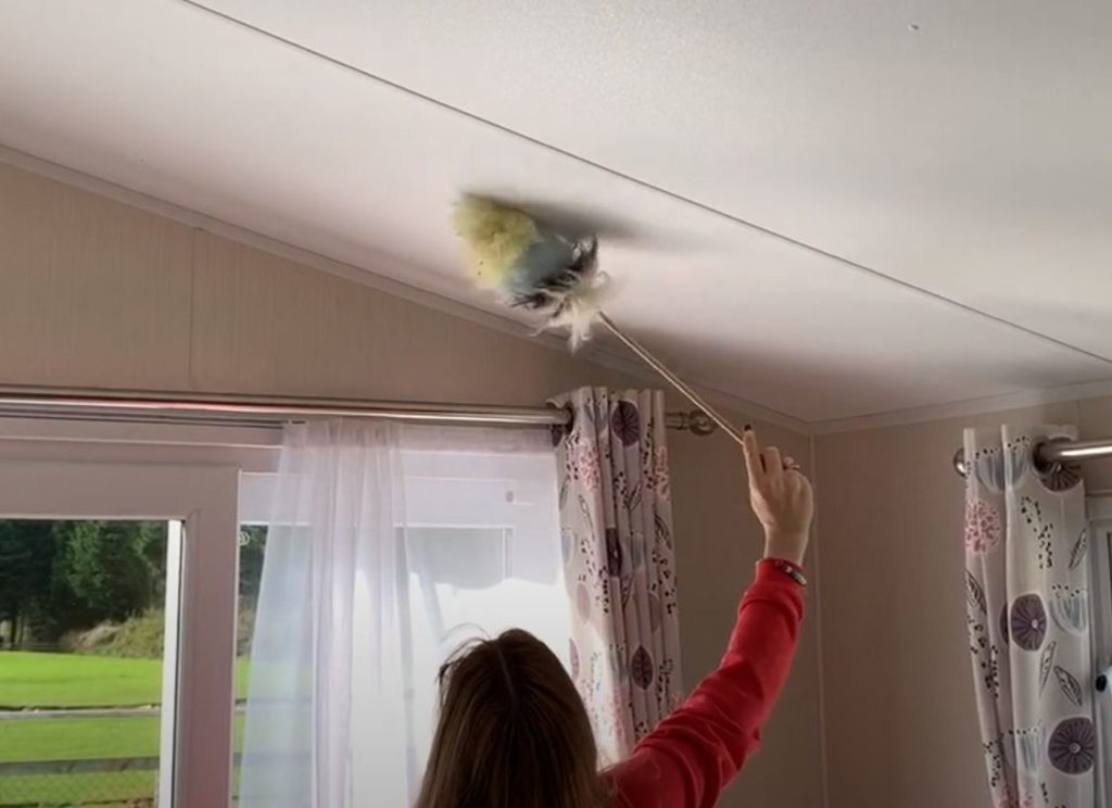 Dusting static caravan roof